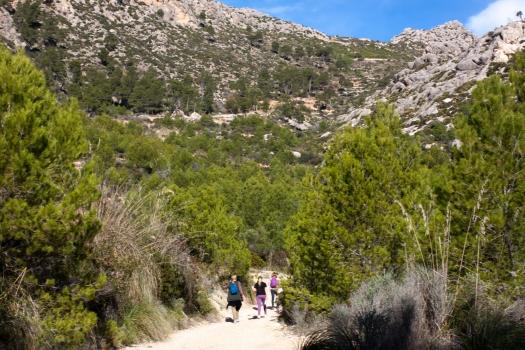 Photographer, Vicki McLeod, Sa Trapa, Sant Elm, Mallorca