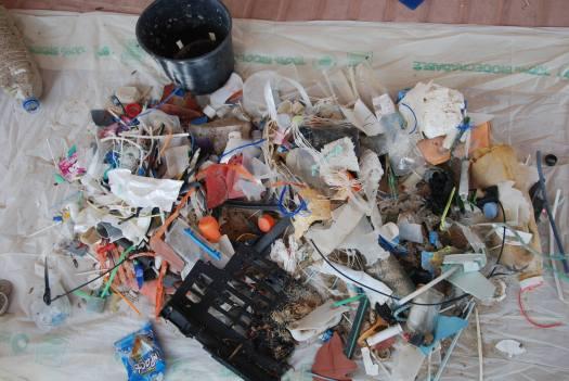 Dos Manos, beach clean up, environment, Mallorca, Majorca